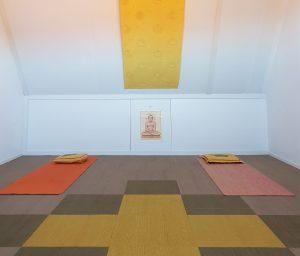 yogazolder van yoga met carolien, yoga nidra